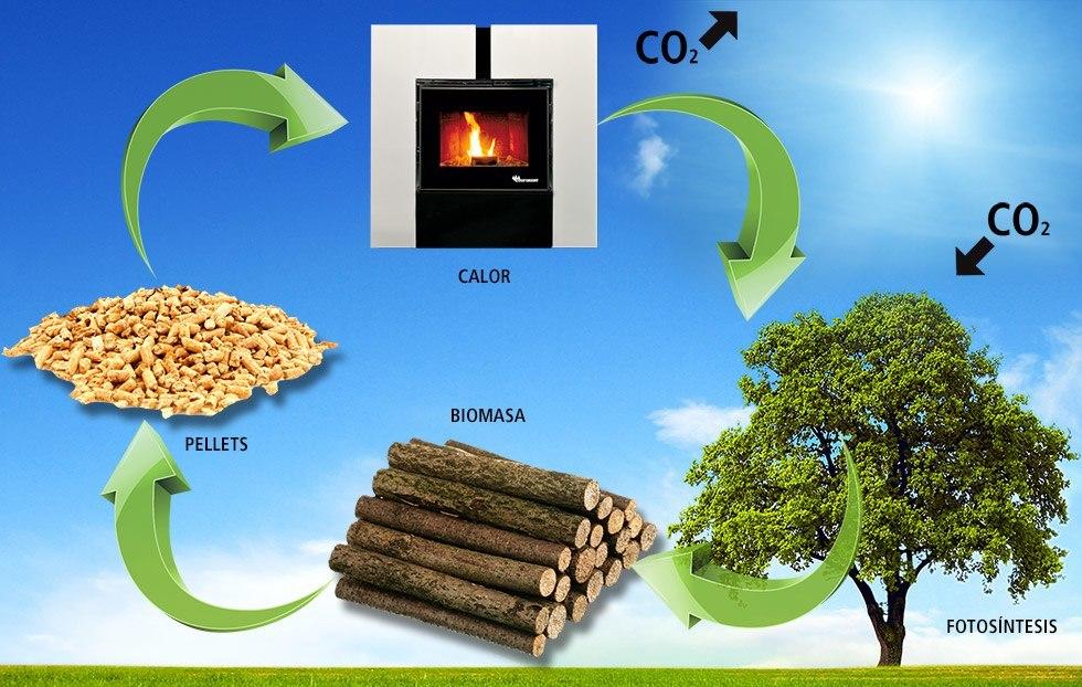 biomasa ciclo