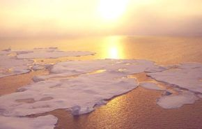 ¿Es el calentamiento global el mayor descubrimiento científico?