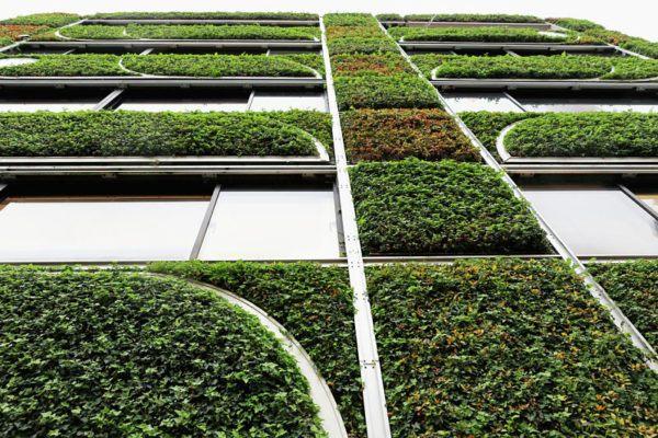 Construccion verde coste
