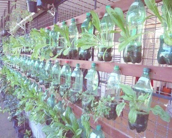 Ideas para reciclar las botellas de plástico