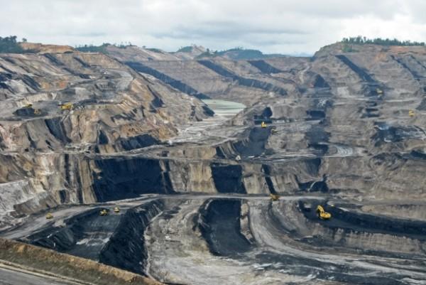 mina carbon