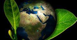 Día Mundial del Medio Ambiente – 5 de Junio 2018