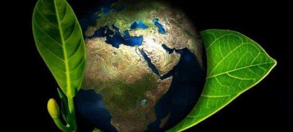 dia-mundial-del-medio-ambiente-5-de-junio-2015-cuando-fue-establecido
