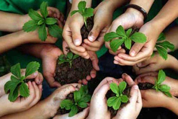 dia-mundial-del-medio-ambiente-5-de-junio-2015-italia