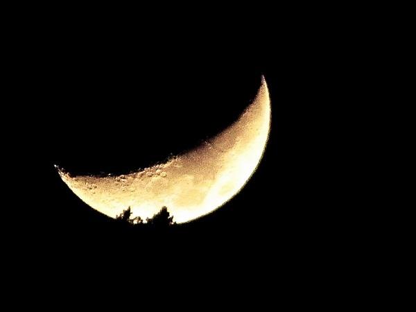 Cu ndo es luna creciente 2016 for Que es luna creciente