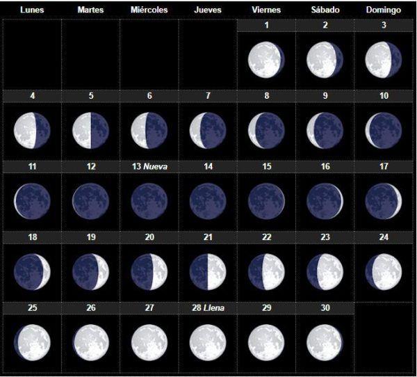 Evita de luna y nena gogo show erotico en el feda 2013 - 1 part 3