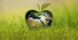 Los mejores avances en las energías renovables