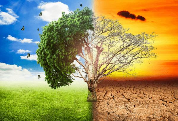 Otros elementos que afectan al tiempo y el clima