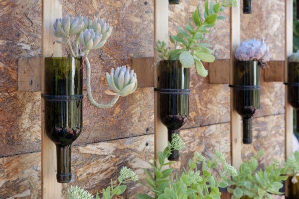 Decoracion de botellas con plantas como jardin