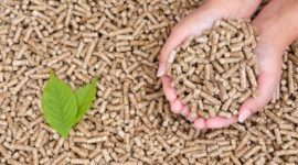 ¿Cómo funciona la biomasa?