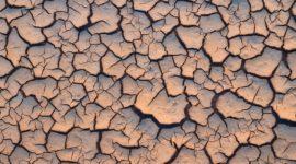 Qué es la desertificación y por qué nos puede afectar tanto
