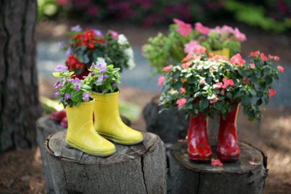 Reciclaje ideas para decorar tu casa con plantas botas