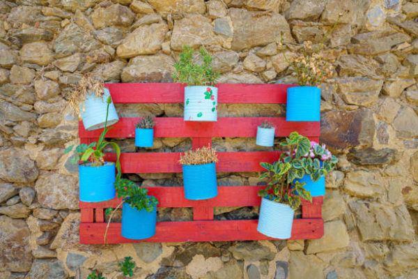 Reciclaje ideas para decorar tu casa con plantas palet