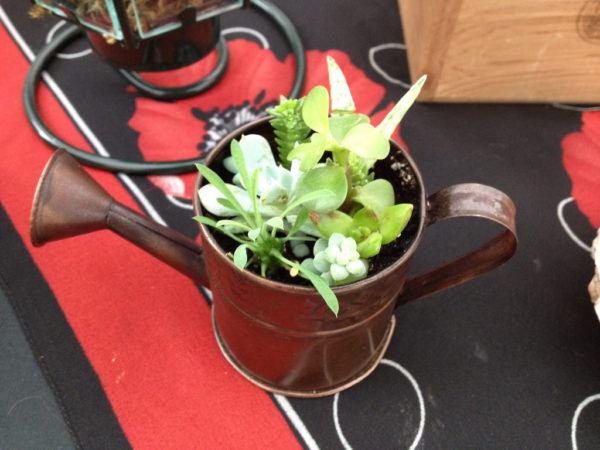 Reciclaje ideas para decorar tu casa con plantas regadera
