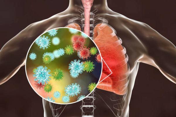 Virus parecidos coronavirus